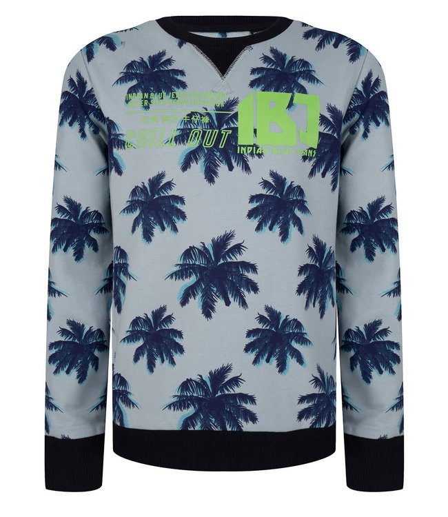 Indian Blue Jeans Indian Blue Jeans : Sweater Palmtree