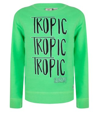 Indian Blue Jeans Indian Blue Jeans : Sweater Tropic