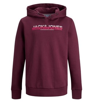 Jack & Jones Jack & Jones : Hoodie Jumbo (Port royal)