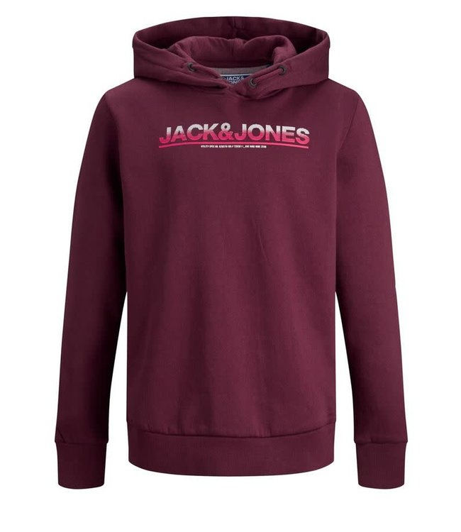 Jack & Jones Jack & Jones : Hoodie Jumbo (Port royal)