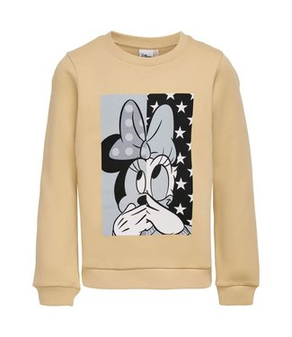 Only Kids Kids Only : Sweater Disney (Ginger root)