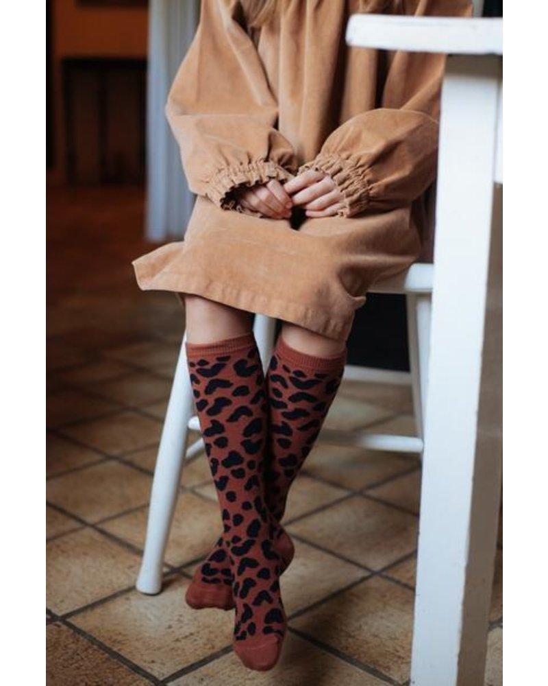 Daily Brat Knee socks brownie
