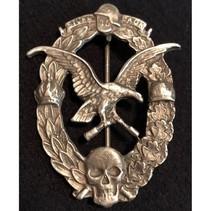 Luftwaffe WO1 badge