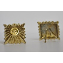 SS ruit insigne goud