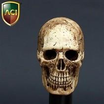 Hand painted skull 1:6