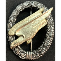 fallschirmjäger badge denazified