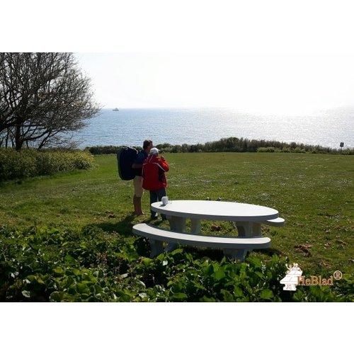 Buitenplezier-online Picknicktafel beton standaard ovaal