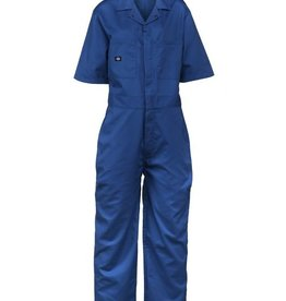 Dickies Rego Park  Royal Blue