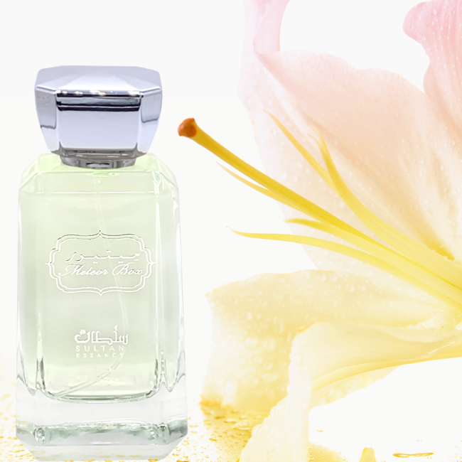 Parfüm Meteor Eau de Perfume von Sultan Essancy