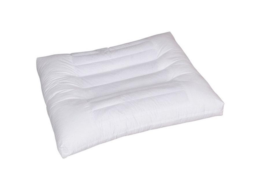 Konbanwa Pillow Cassia Seed