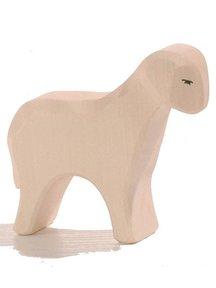 Ostheimer Sheep Standing
