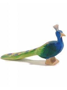 Ostheimer Peacock