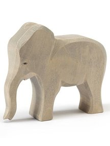 Ostheimer Elephant cow new