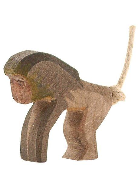 Ostheimer Baboon Standing