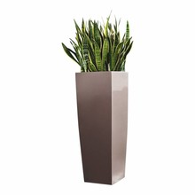 Lechuza Sansevieria in zelfwatergevende pot Taupe