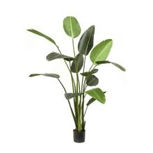 Strelitzia XL kunstplant