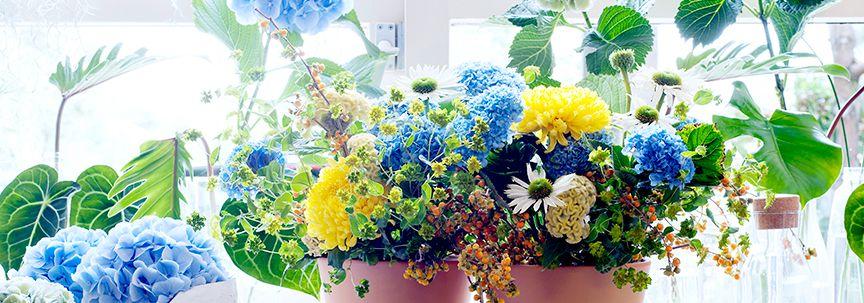 Woonplant van de maand april is de Hortensia
