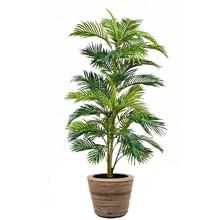 kunstplant Goudpalm in rattan pot