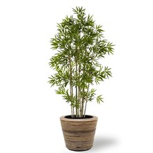 Kunstplant Japanse Bamboe in Rattan Pot