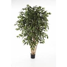 Ficus exotica L kunstplant