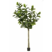 Ficus Lyrata XL kunstplant