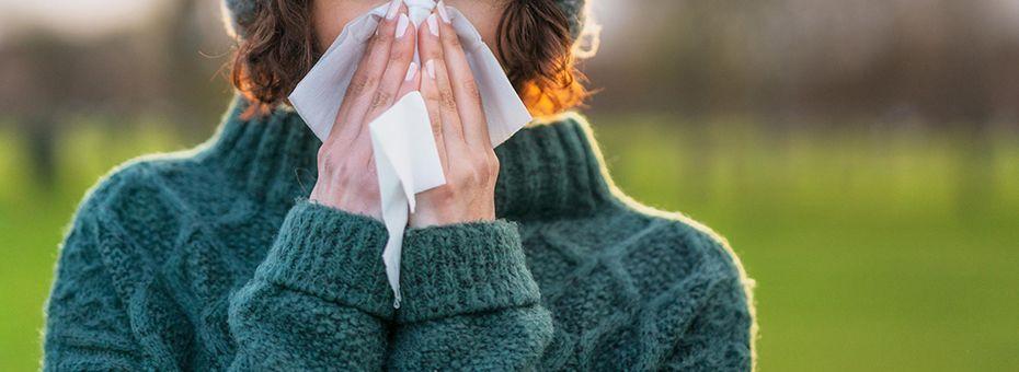 De kans op griep verkleinen met deze kamerplanten