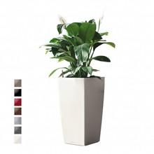 Lechuza Lepelplant in witte zelfwatergevende pot