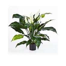 Lepelplant kunstplant