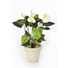 Anthurium wit kunstplant