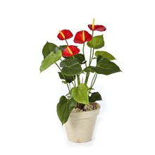 Anthurium rood kunstplant
