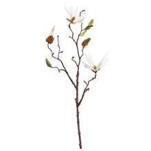 Magnolia wit kunsttak S
