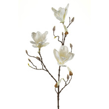 Magnolia wit kunsttak L