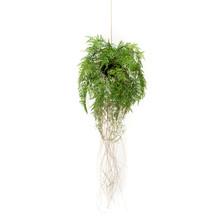 Fern Roots Hang  S kunstplant