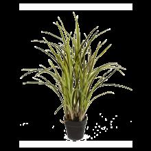 Natural grass kunstplant