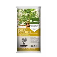 Pokon Palmpotgrond
