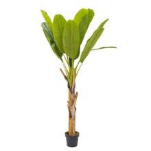 Bananenplant kunstplant