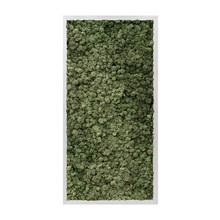 Plantenschilderij Gray L