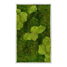 Plantenschilderij Gray XL