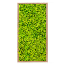 Plantenschilderij Houten frame L