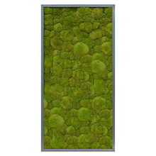 Plantenschilderij Donker grijs  frame XXL
