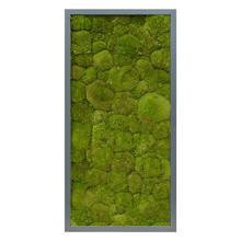 Plantenschilderij Donker grijs  frame L
