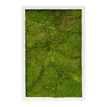 Plantenschilderij Wit frame M
