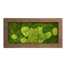 Plantenschilderij Donker Stone  frame M
