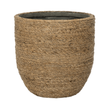 Ancona Grass XL