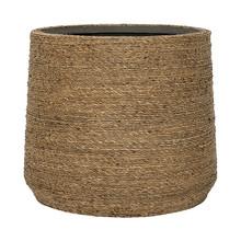 Bari Grass M