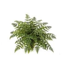Athyrium fern kunstplant