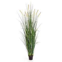 Foxtail wild grass kunstplant