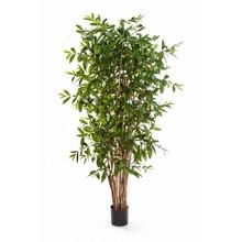 Dracaena  drakenbloedboom kunstplant