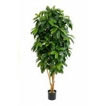 Schefflera kunstplant