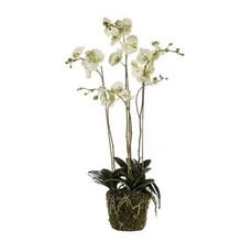 Orchidee wit XL kunstplant